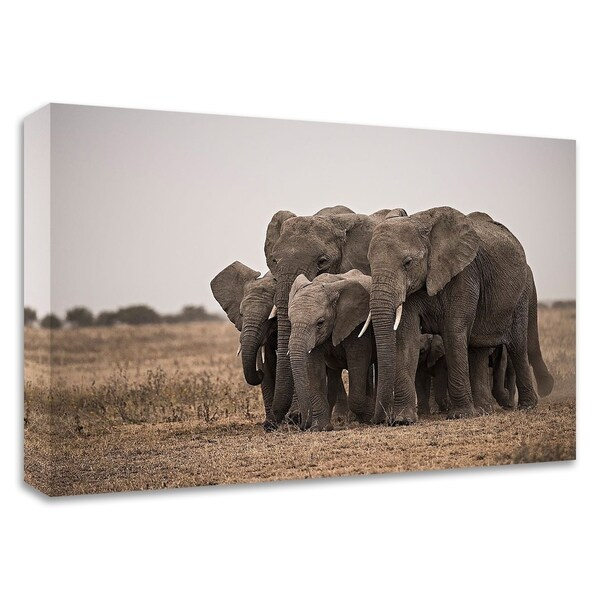 """""""Elephant Family"""" by Eddie Soloway, Print on Canvas, Ready to Hang"""