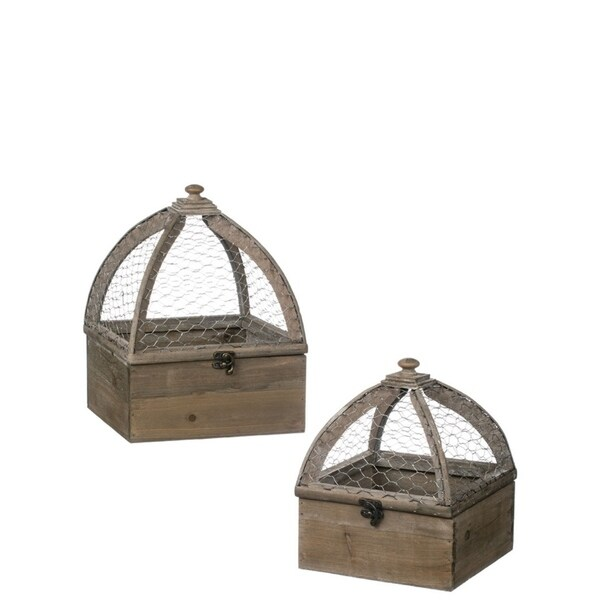 Square Wood Terrariums - Set of 2