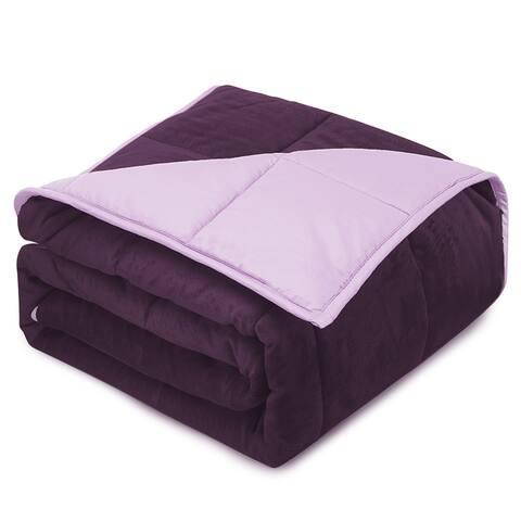 Nestl Bedding Reversible Plush Microfiber Weighted Kids Blanket