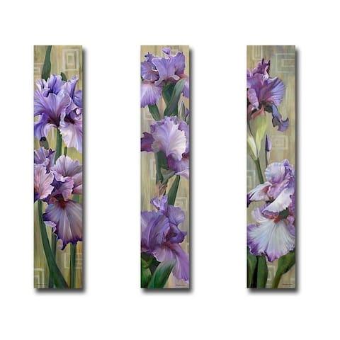 Iris I, II, & III by Jan McLaughlin 3-pc Gallery Wrapped Canvas Giclee Art Set (40 in x 8 in Each Canvas in Set)