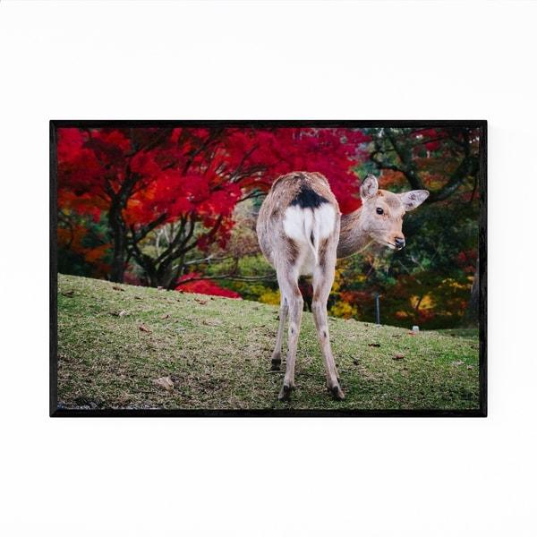 Noir Gallery Nara Japan Deer Autumn Photo Framed Art Print