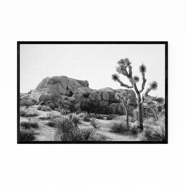 Noir Gallery Arizona Desert Nature Photo Framed Art Print