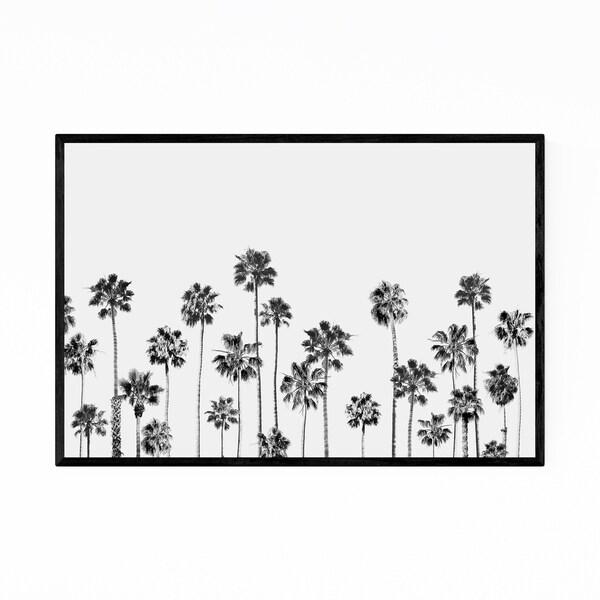 Noir Gallery Palm Trees Black & White Photo Framed Art Print