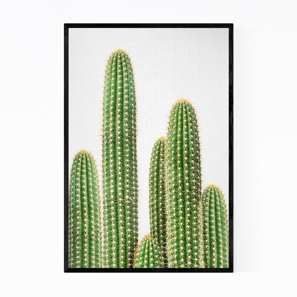 Noir Gallery Cactus Nature Photo Framed Art Print