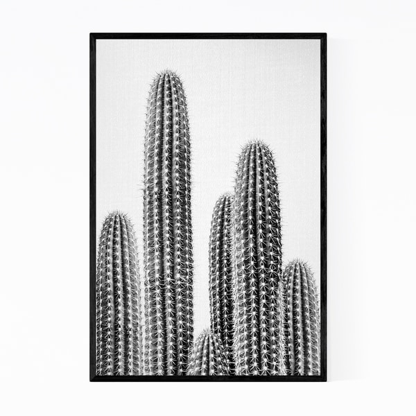 Noir Gallery Cactus Nature Black & White Photo Framed Art Print
