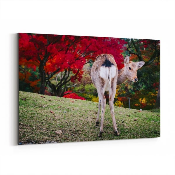 Noir Gallery Nara Japan Deer Autumn Photo Canvas Wall Art Print
