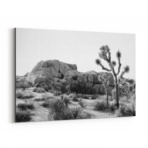 Noir Gallery Arizona Desert Nature Photo Canvas Wall Art Print