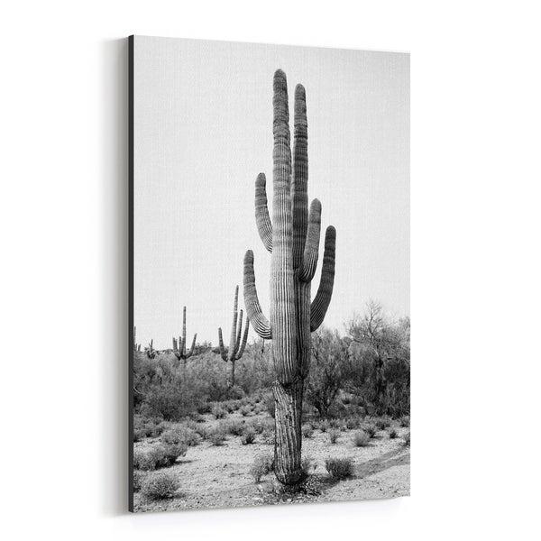 Noir Gallery Arizona Cactus Desert Nature Photo Canvas Wall Art Print