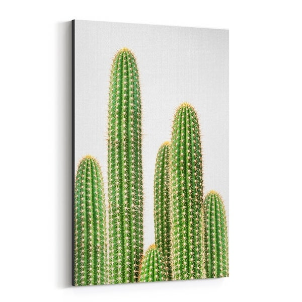 Noir Gallery Cactus Nature Photo Canvas Wall Art Print
