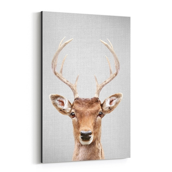 Noir Gallery Deer Animals Photo Canvas Wall Art Print