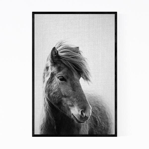 Noir Gallery Horse Animals Black & White Photo Framed Art Print