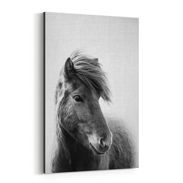 Noir Gallery Horse Animals Black & White Photo Canvas Wall Art Print