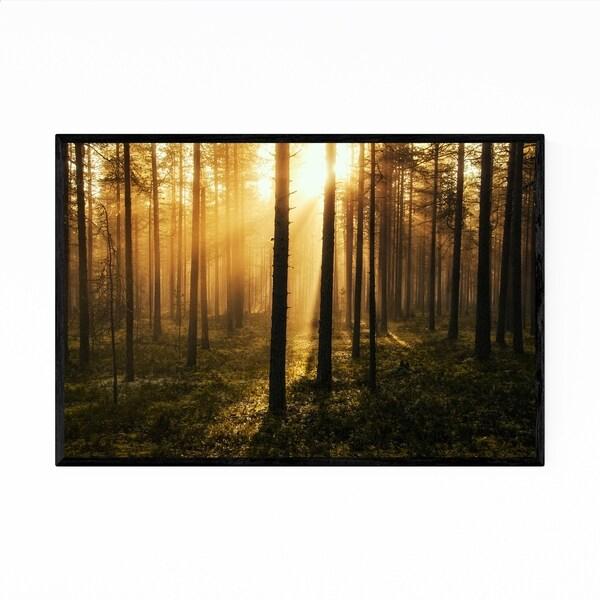 Noir Gallery Sweden Forest Nature Photo Framed Art Print