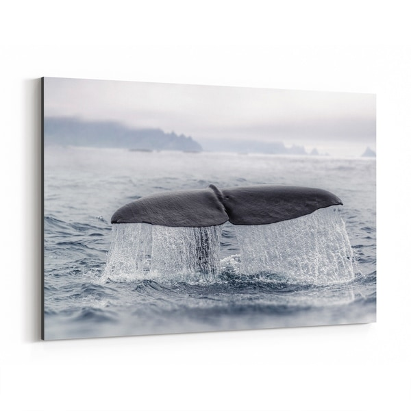 Noir Gallery Norway Nature Sperm Whale Canvas Wall Art Print