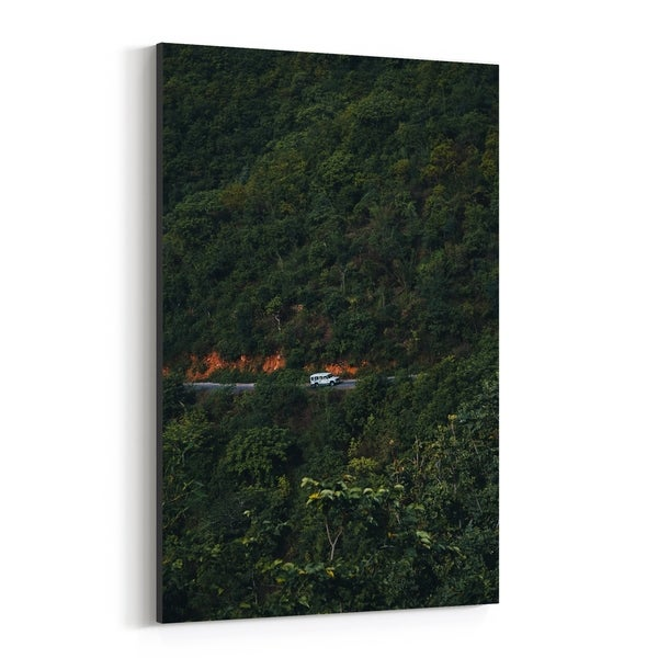 Noir Gallery Udaipur India Forest Photo Canvas Wall Art Print