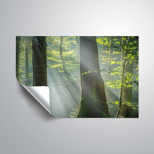 """Shower of light"" Removable Wall Art Mural. Opens flyout."