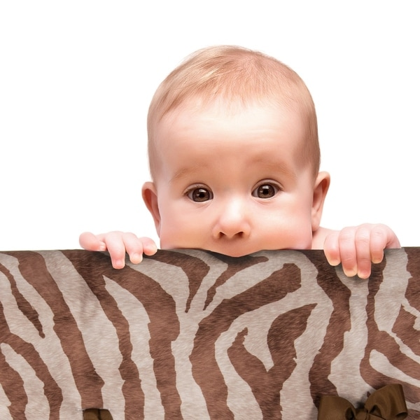 Glenna Jean Baby Crib Convertible Short Rail Guard Protector(Set of 2) Brown and White Zebra