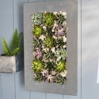 Modern Home Living Wall Galvanized Steel/Zinc Succulent Planter, Wall Mounted Garden Pocket Planter