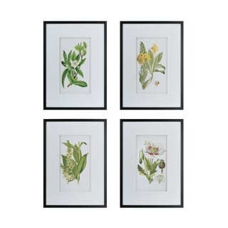 Black Framed Botanical Flower Wall Art (Set of 4)