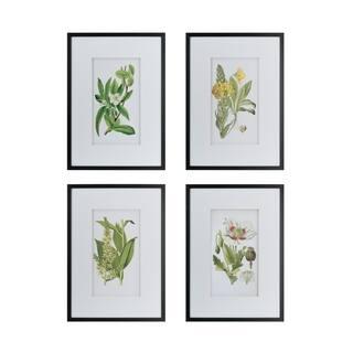 Black Framed Botanical Flower Wall Art (Set of 4)