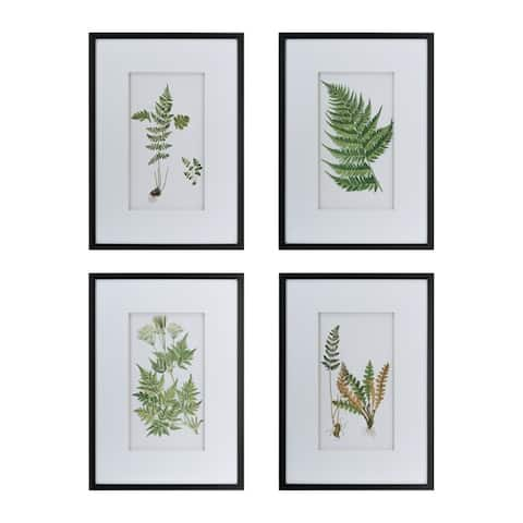 Black Framed Botanical Fern Wall Art (Set of 4)