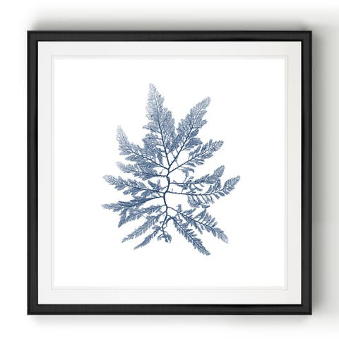 Navy Seaweed II -Black Framed Print