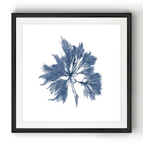 Navy Seaweed I -Black Framed Print