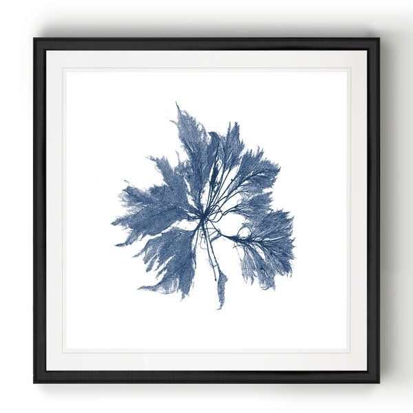 Navy Seaweed I -Black Framed Print. Opens flyout.