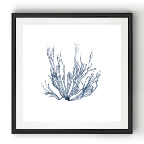 Navy Seaweed IV -Black Framed Print