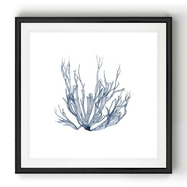 Navy Seaweed IV -Black Framed Print. Opens flyout.