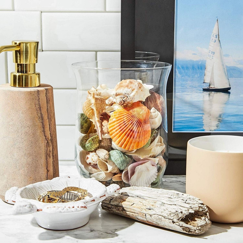 Mixed Sea Shells For Diy Crafts Beach Decor 135 Count