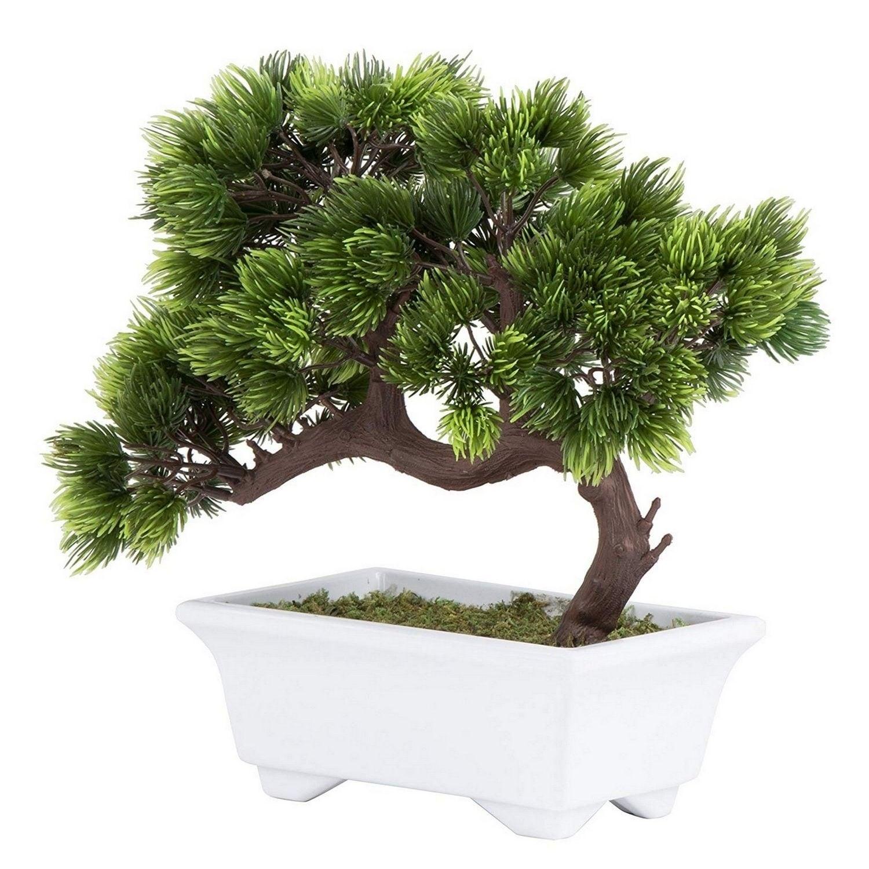5Pcs Artificial Succulent Fake Bonsai Plants 1 Plant Pot Home Table Garden Decor
