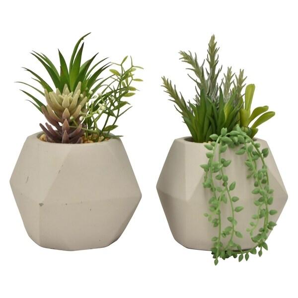 Faux Succlent Pot- 2 Assortd in Green Terracotta 5in L x 5inW x 9in H
