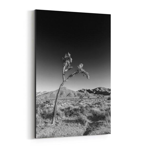 Noir Gallery Joshua Tree California Desert Nature Canvas Wall Art Print