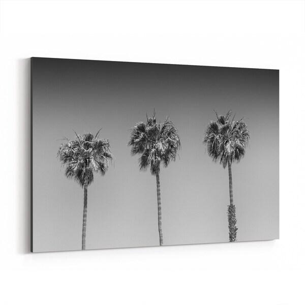 Noir Gallery San Diego California Beach Palm Trees Canvas Wall Art Print