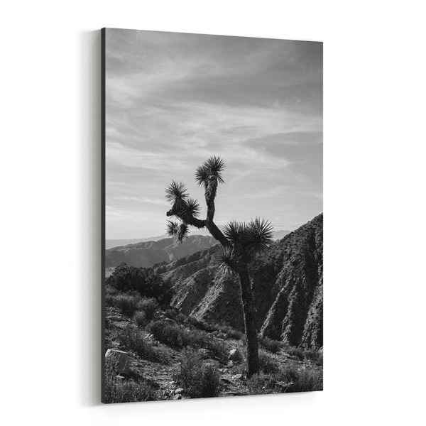Noir Gallery Joshua Tree National Park California Canvas Wall Art Print