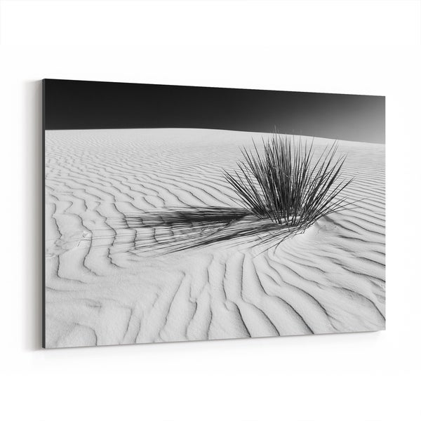 Noir Gallery White Sands New Mexico Desert Dunes Canvas Wall Art Print
