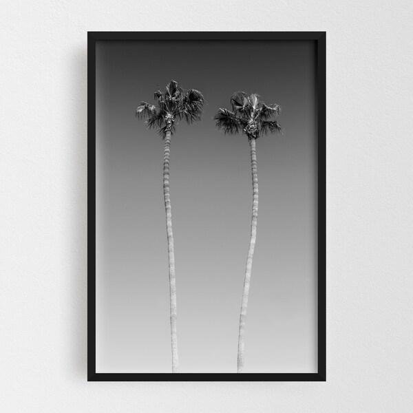 Noir Gallery San Diego California Beach Photo Framed Art Print