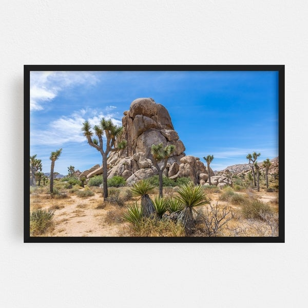 Noir Gallery Joshua Tree California Nature Photo Framed Art Print