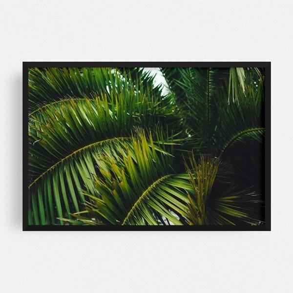 Noir Gallery San Francisco California Beach Palm Tree Framed Art Print
