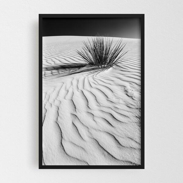 Noir Gallery White Sands New Mexico Desert Dunes Framed Art Print