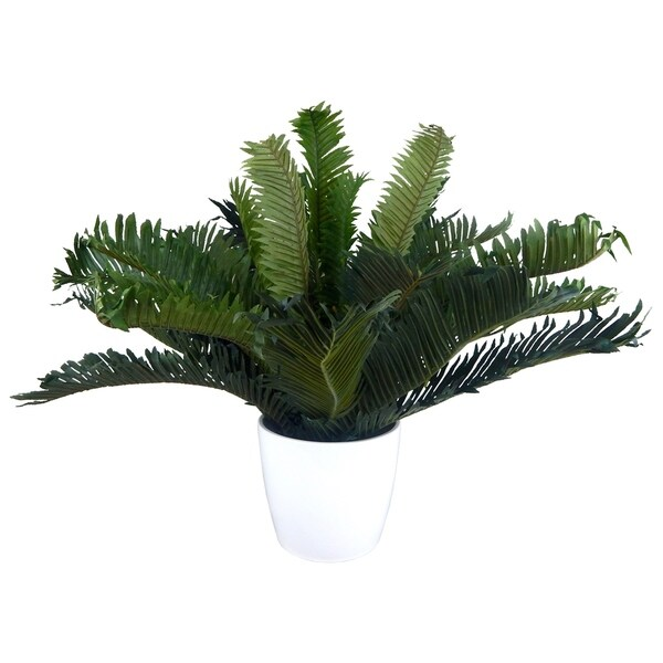 Modern real touch palm plant