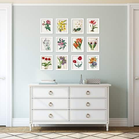 New York Botanical Garden Framed Vintage Art Set