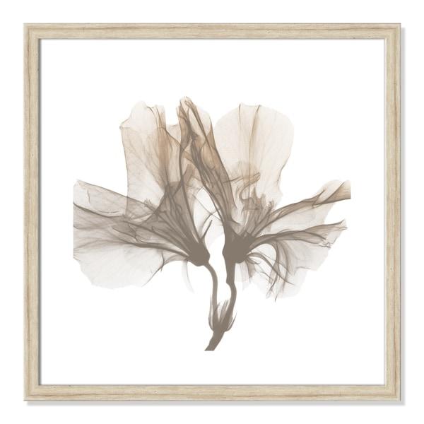 Dry Azalea I
