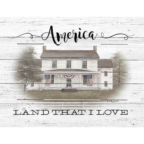 Wood Pallet Art - America
