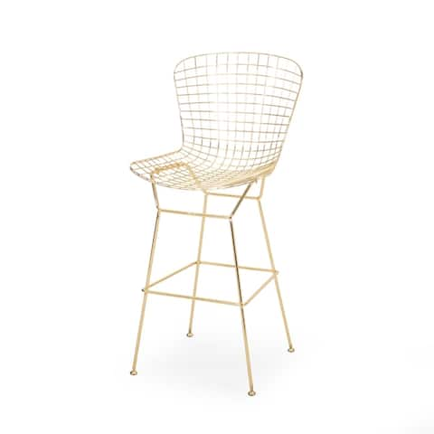 Lynhaven Modern Glam Iron Barstool by Christopher Knight Home