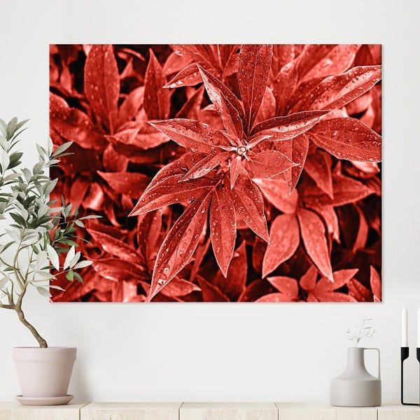Designart 'Colored fresh peony leaves with dew' Tropical Canvas Wall Art