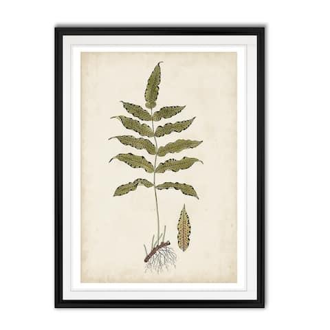 Fern Botanical III -Custom Framed Print