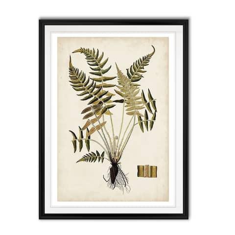 Fern Botanical IV -Custom Framed Print