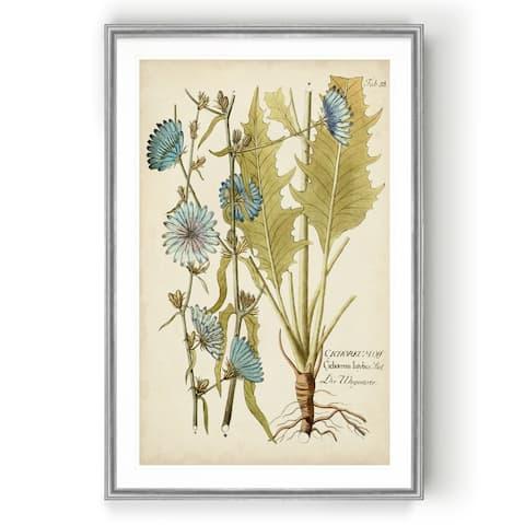 Eloquent Botanical I -Custom Framed Print